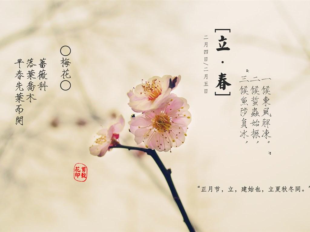 二十四节气高清立春图片分享