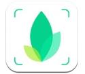 识物app在线下载_识物软件官网下载
