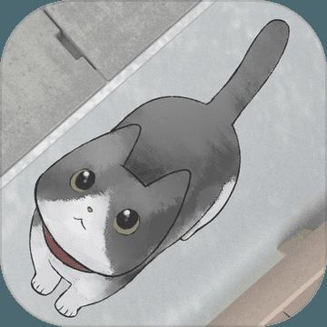 迷路猫咪的故事