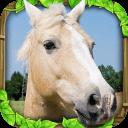 野马模拟器游戏下载_野马模拟器安卓版下载