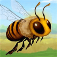蜜蜂奥德赛